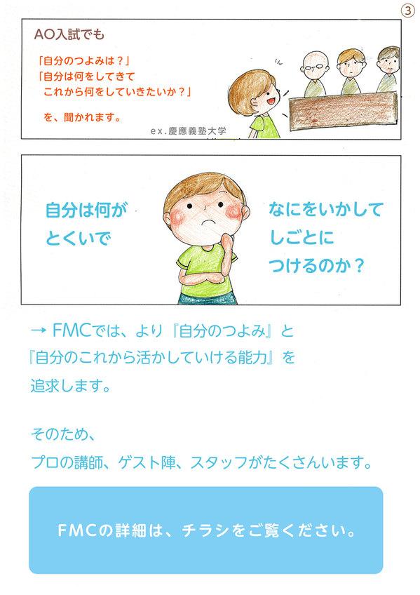 fmc03.jpg